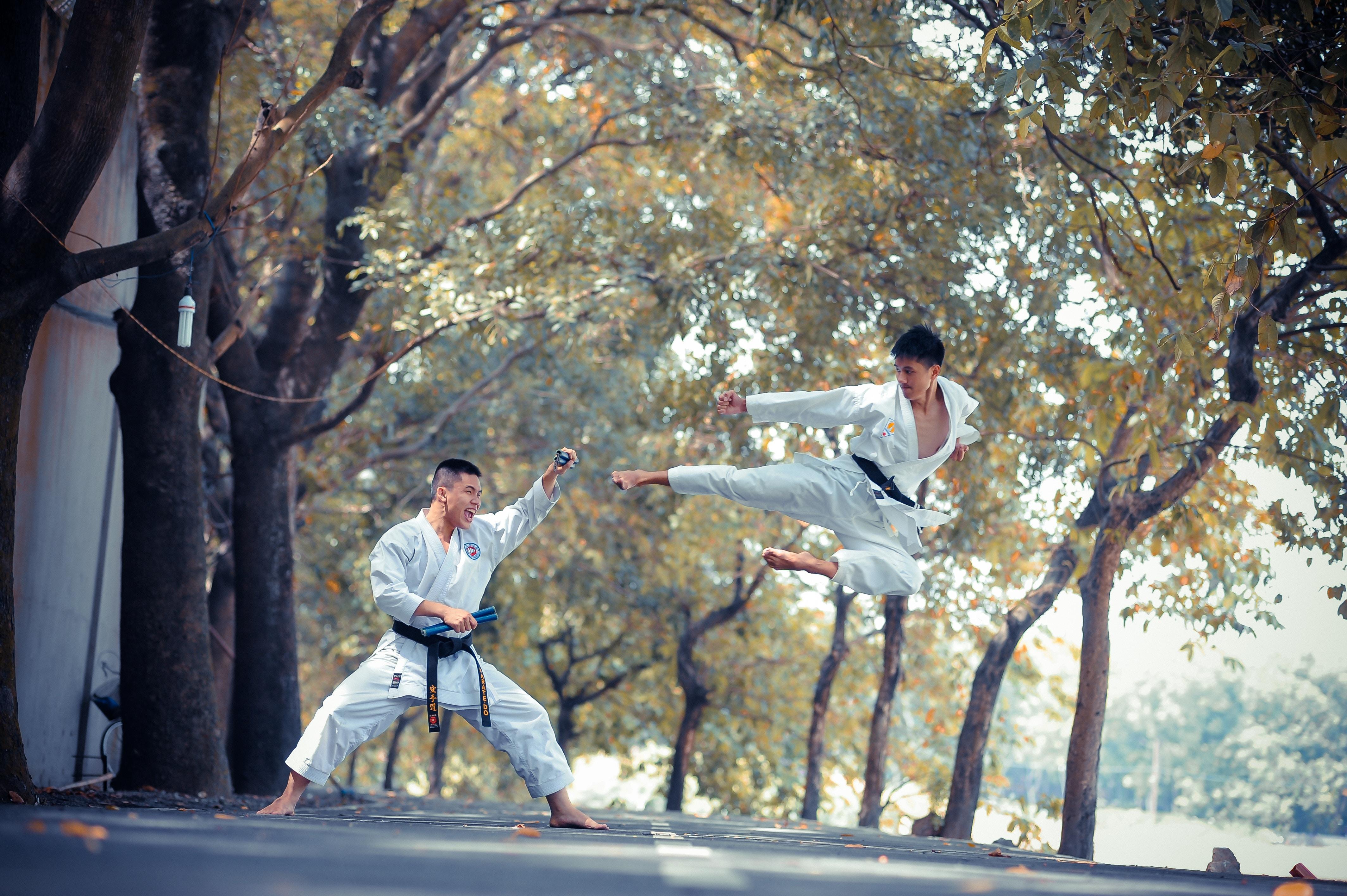 arte marcial mas completo